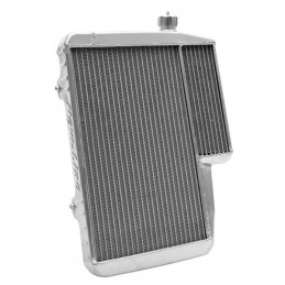 Radiator RS-Special